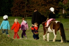 horse-rides-8-copy1
